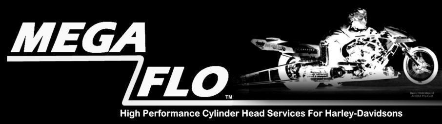 Megaflo,Megaflow,Harley Davidson, Buell, S&S cylinder head